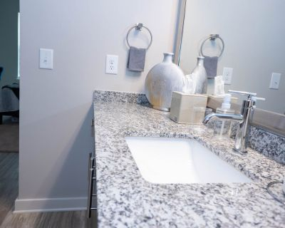 Lux Apartment-15 Mins From Downtown-Stone Mount Hiking Trail - Northlake