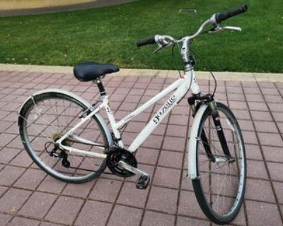 classic lady bike