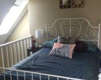 1430 18th St #5, Boulder, CO 80302 1 Bedroom House