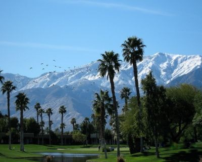 Desert Princess Palm Springs- No Property/booking Fees & BS - Cathedral City