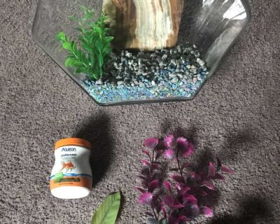 Large goldfish bowl with accessories