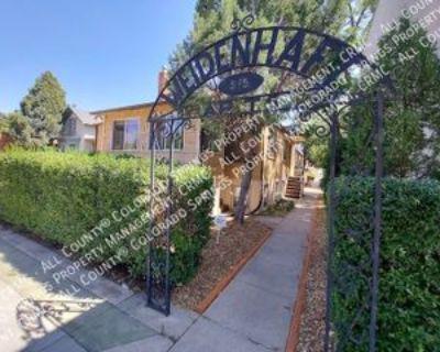 515 N Tejon St #5, Colorado Springs, CO 80903 1 Bedroom Apartment