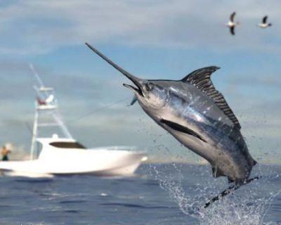 Fishing Charters in Miami