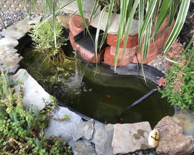 Two ponds and complete accessories