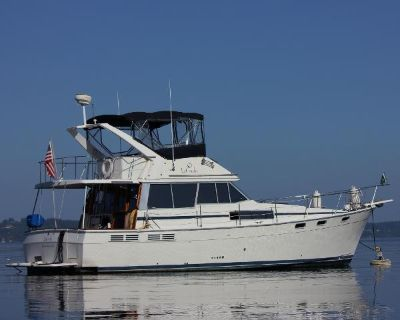 1988 Bayliner Motor Yacht