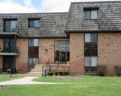 """Just Listed! Buffalo Grove! Fabulous, light and bright 2 bedrooms, 2 baths corner unit in Desirable """"Arbors"""""""