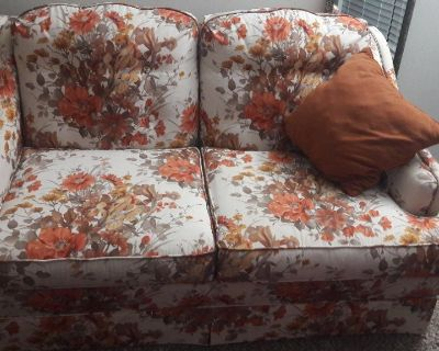 Couch and Loveseat or 2 piece sofa with 2 pillows