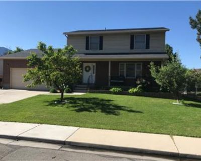 Large, Newly Remodeled Family Home