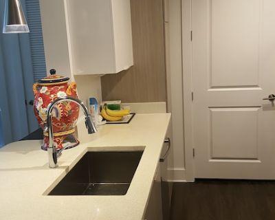 2 Bedroom Luxury Apartment Atlanta Near Cumberland Mall - Cumberland