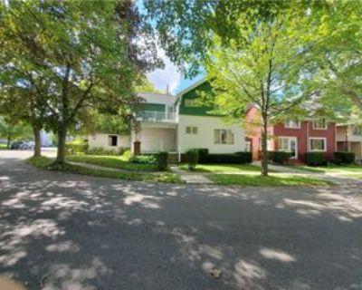 18 Montrose Ave, Buffalo, NY 14214 3 Bedroom Apartment