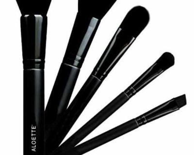 New in package Aloette Pro Tools make up brush collection
