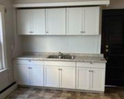 151 Hedley Place - 1 #1, Buffalo, NY 14208 3 Bedroom Apartment
