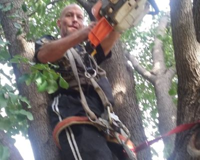 A & D LAWN AND. TREE SERVICE