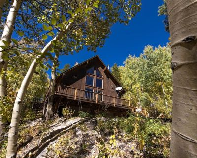 Pet Friendly Totthouse Lodge - Garfield