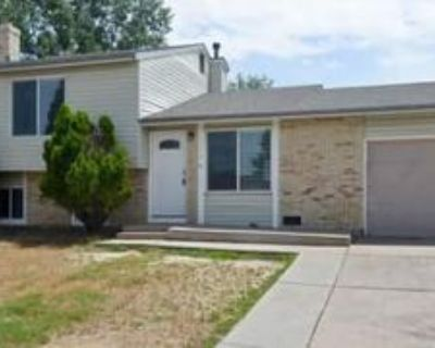 5174 Sable St, Denver, CO 80239 4 Bedroom House