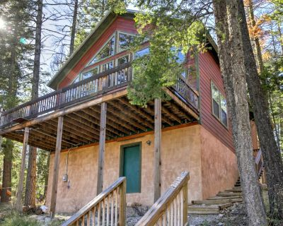 Cozy Cloudcroft Cabin w/Serene Wooded Views & Deck - Bear Park