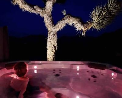 The Kolu: Joshua Tree - Joshua Tree Highlands