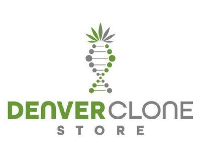 Denver Clone Store