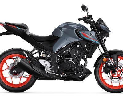 2021 Yamaha MT-03 Sport Hobart, IN