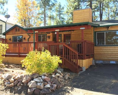 Beautiful Cabin Near Lake and Village. - Big Bear Lake
