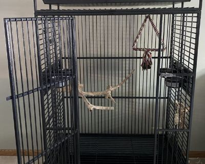Kings Large Playtop Parrot / Bird Cage with Nest Box