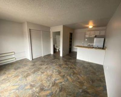 200 Hermosa Drive NortheastUnit 206 #206, Albuquerque, NM 87110 Studio Apartment