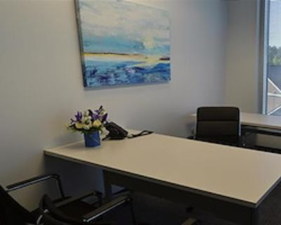 Private Office for 3 at Peachtree Offices at Perimeter, LLC.