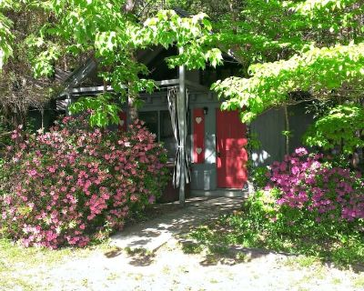 Bear Paw Cottage (#6 King)Adorable;Hot Tub;Pet Friendly;2 Adults/2 Children Max - Sautee Nacoochee
