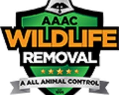 AAAC Wildlife Removal of Denver