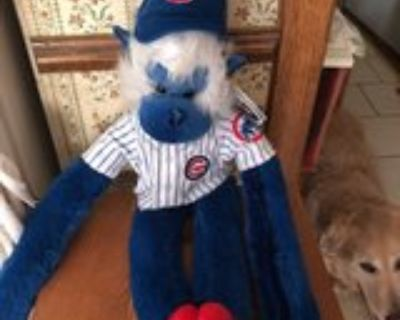 Cubs forever blue and white monkey