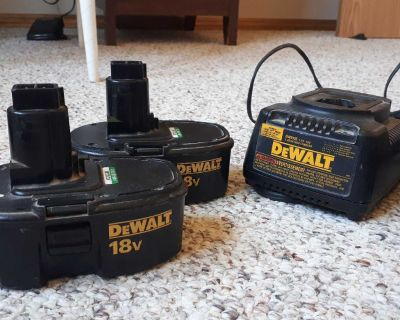 Dewalt and Metabo battery and charger