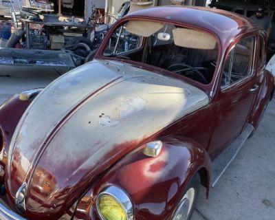 67 patina bug
