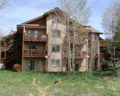 302 Crazy Horse Point - 1 #302, Edwards, CO 81632 2 Bedroom House
