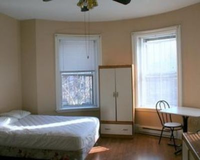 627 Tremont St #1, Boston, MA 02118 Studio Apartment