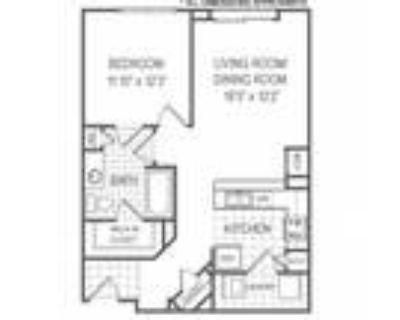 Belmont at Freemason - A3 Floorplan