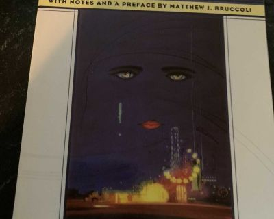 The Great Gatsby by F. Scott Fitzgerald Paperback Great Condition