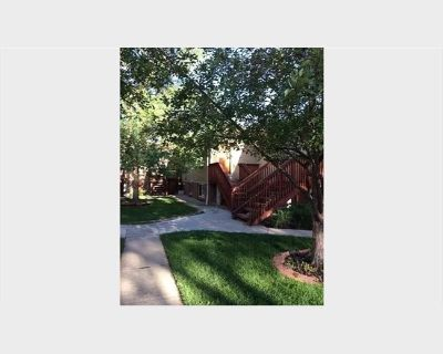 Room for rent in South Race Street, University - Cheap Apartment next to University of Denver