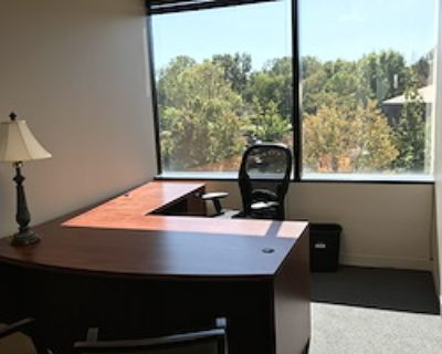 Private Office for 1 at Apcela Co-Working Space @ Wiehle Reston East Metro