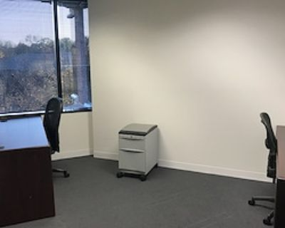 Team Office for 3 at Apcela Co-Working Space @ Wiehle Reston East Metro
