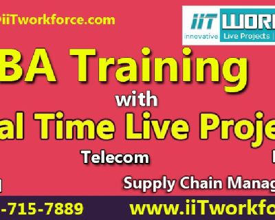 iiT Workforce the leading provider of BA Training with real time projects in usa.