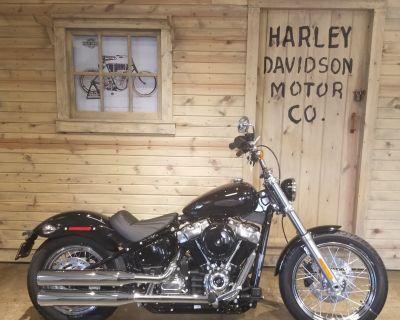 2021 Harley-Davidson Softail Standard Softail Mentor, OH