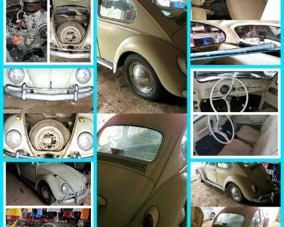 1965 VW Beetle Bug