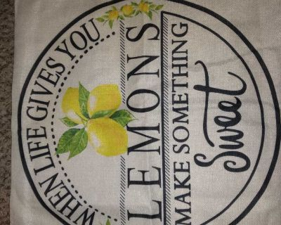 New pillow cover 20x20