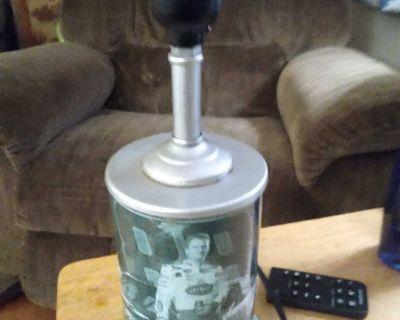Dale Jr. Lamp