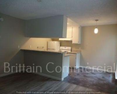 2114H N Street O Street Aly #1, Sacramento, CA 95811 1 Bedroom House