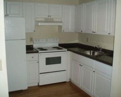 2200 Springdale Blvd #309, Palm Springs, FL 33461 1 Bedroom Condo