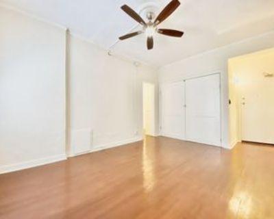 840 S Hobart Blvd #207, Los Angeles, CA 90005 Studio Apartment
