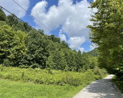 Plot For Sale In Pioneer, Tennessee