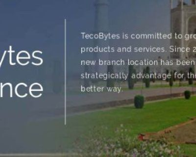 Best Business Solution Services by Tecobytes