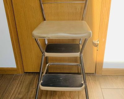 Step Stool with Seat